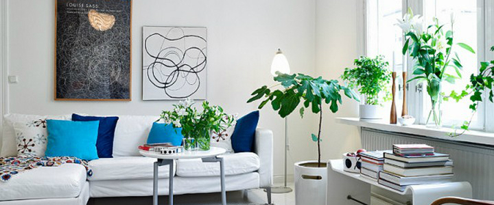 The must have colors for summer 2014 The must have colors for summer 2014 summer color interior design decoration ideas decor trends fresh sofa plants white featured