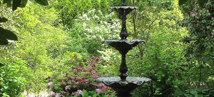 Amazing Fountains for your Home Garden
