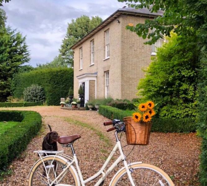 instagram Most Influential Home Interiors Accounts On Instagram influentialhomeinteriors12 666x600 1